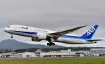 Dojalanaさんが、函館空港で撮影した全日空 787-8 Dreamlinerの航空フォト(飛行機 写真・画像)
