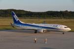 美月推しさんが、能登空港で撮影した全日空 737-8ALの航空フォト(写真)