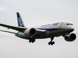 名無しの権兵衛さんが、成田国際空港で撮影した全日空 787-8 Dreamlinerの航空フォト(写真)