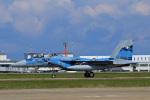 Wasawasa-isaoさんが、小松空港で撮影した航空自衛隊 F-15DJ Eagleの航空フォト(写真)