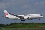 JA8037さんが、成田国際空港で撮影した日本航空 787-8 Dreamlinerの航空フォト(写真)
