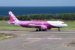 新潟空港 - Niigata Airport [KIJ/RJSN]で撮影されたピーチ - Peach [MM/APJ]の航空機写真