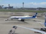 どらかいさんが、羽田空港で撮影した全日空 787-8 Dreamlinerの航空フォト(写真)