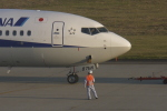 Mitsuki1211さんが、能登空港で撮影した全日空 737-8ALの航空フォト(写真)