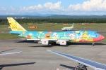 NAOHIROさんが、新千歳空港で撮影した全日空 747-481(D)の航空フォト(写真)