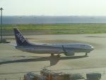 ヒロリンさんが、羽田空港で撮影した全日空 737-881の航空フォト(写真)