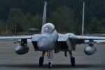 harahara555さんが、千歳基地で撮影した航空自衛隊 F-15DJ Eagleの航空フォト(写真)