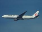 otromarkさんが、八尾空港で撮影した日本航空 777-246の航空フォト(写真)