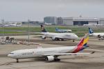starlightさんが、羽田空港で撮影したアシアナ航空 A330-323Xの航空フォト(写真)