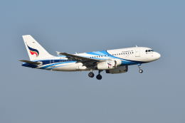 航空フォト:HS-PPC バンコクエアウェイズ A319