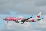 starlightさんが、那覇空港で撮影した日本トランスオーシャン航空 737-8Q3の航空フォト(写真)