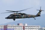 Chofu Spotter Ariaさんが、八尾空港で撮影した陸上自衛隊 UH-60JAの航空フォト(飛行機 写真・画像)