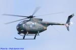 Chofu Spotter Ariaさんが、八尾空港で撮影した陸上自衛隊 OH-6Dの航空フォト(写真)