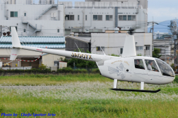 Chofu Spotter Ariaさんが、八尾空港で撮影した日本個人所有 R44 Raven IIの航空フォト(写真)