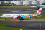 SFJ_capさんが、成田国際空港で撮影したサンデー・エアラインズ 757-204の航空フォト(写真)