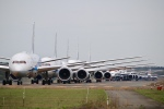 そら丸さんが、新千歳空港で撮影した全日空 787-9の航空フォト(飛行機 写真・画像)