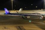 そら丸さんが、羽田空港で撮影した全日空 A321-272Nの航空フォト(写真)