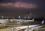 そら丸さんが、羽田空港で撮影した全日空 777-381の航空フォト(飛行機 写真・画像)