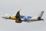 安芸あすかさんが、パリ オルリー空港で撮影したブエリング航空 A320-232の航空フォト(写真)