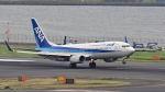オキシドールさんが、羽田空港で撮影した全日空 737-881の航空フォト(写真)