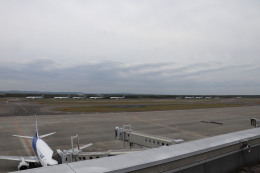 T_pontaさんが、新千歳空港で撮影した全日空 777-381の航空フォト(写真)