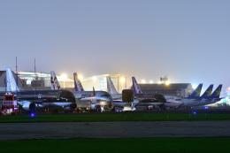 HISAHIさんが、福岡空港で撮影したスターフライヤー A320-214の航空フォト(写真)