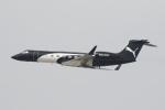 安芸あすかさんが、ロサンゼルス国際空港で撮影したPrivate G-Vの航空フォト(写真)
