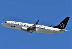 鉄バスさんが、伊丹空港で撮影した全日空 737-881の航空フォト(写真)