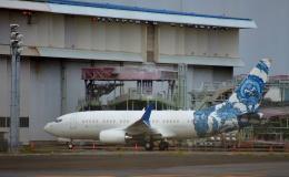 KAZKAZさんが、羽田空港で撮影したサウジアラビア企業所有 737-7CJ BBJの航空フォト(飛行機 写真・画像)