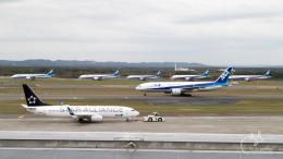 うみBOSEさんが、新千歳空港で撮影した全日空 737-881の航空フォト(写真)
