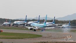 うみBOSEさんが、新千歳空港で撮影した大韓航空 737-8BKの航空フォト(写真)