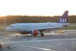 kahluamilkさんが、ヘルシンキ空港で撮影したスカンジナビア航空 A319-131の航空フォト(写真)