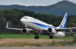 Dojalanaさんが、函館空港で撮影した全日空 737-881の航空フォト(飛行機 写真・画像)