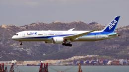 FlyingMonkeyさんが、香港国際空港で撮影した全日空 787-9の航空フォト(飛行機 写真・画像)