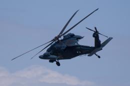 かずまっくすさんが、小松空港で撮影した航空自衛隊 UH-60Jの航空フォト(飛行機 写真・画像)