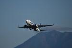 koumepapaさんが、旭川で撮影した全日空 737-781の航空フォト(写真)