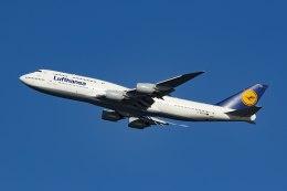 航空フォト:D-ABYN ルフトハンザドイツ航空 747-8