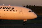 ま~くんさんが、成田国際空港で撮影した日本航空 787-8 Dreamlinerの航空フォト(写真)