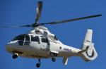 チャーリーマイクさんが、東京ヘリポートで撮影したエアバス・ヘリコプターズ・ジャパン AS365N2 Dauphin 2の航空フォト(写真)