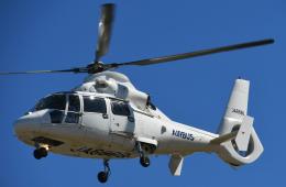 チャーリーマイクさんが、東京ヘリポートで撮影したエアバス・ヘリコプターズ・ジャパン AS365N2 Dauphin 2の航空フォト(飛行機 写真・画像)