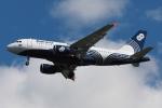 木人さんが、成田国際空港で撮影したオーロラ A319-111の航空フォト(写真)