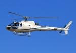 LOTUSさんが、名古屋飛行場で撮影した日本法人所有 AS350B3 Ecureuilの航空フォト(写真)