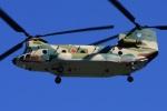 =JAかみんD=さんが、入間飛行場で撮影した航空自衛隊 CH-47J/LRの航空フォト(写真)