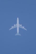 Koenig117さんが、小松空港で撮影した大韓航空 747-8B5の航空フォト(写真)