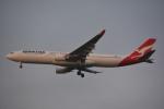アルビレオさんが、成田国際空港で撮影したカンタス航空 A330-303の航空フォト(写真)
