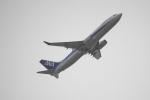 senbaさんが、羽田空港で撮影した全日空 737-881の航空フォト(写真)