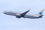 mameshibaさんが、成田国際空港で撮影した厦門航空 737-86Nの航空フォト(写真)