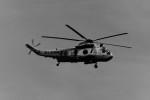 ヒロリンさんが、厚木飛行場で撮影した海上自衛隊 HSS-2B Sea Kingの航空フォト(写真)