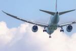 mameshibaさんが、成田国際空港で撮影したエア・カナダ 787-8 Dreamlinerの航空フォト(写真)