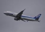 takikoki50000さんが、関西国際空港で撮影した全日空 A320-271Nの航空フォト(写真)